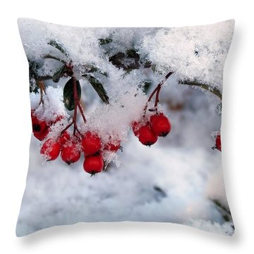 Throw Pillow featuring the photograph Snow Coated Berries by Janice Drew