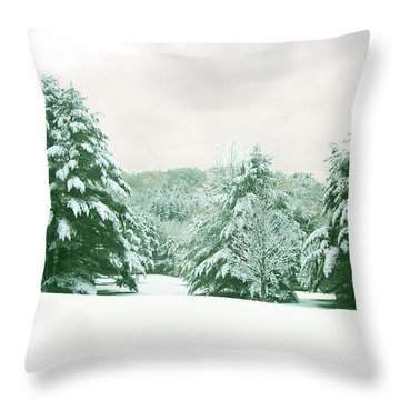 Throw Pillow featuring the photograph Snow Covered Countryside by Michael Waters