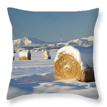 Snow-covered Hay Bales Okotoks Throw Pillow by Michael Interisano