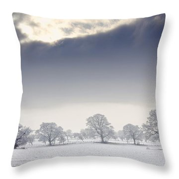 Snow Covered Trees And Field Throw Pillow by John Short