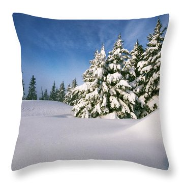 Snow Covered Trees In The Oregon Throw Pillow by Natural Selection Craig Tuttle