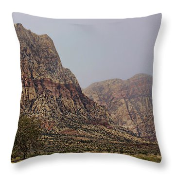 Throw Pillow featuring the photograph Snow Day In The Desert by Tammy Espino