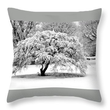 Snow In Connecticut Throw Pillow