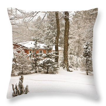 Snow In The Adirondacks Throw Pillow by Ann Murphy