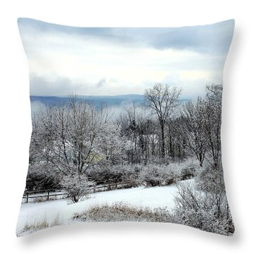Snow In Winter Ithaca New York Throw Pillow by Paul Ge