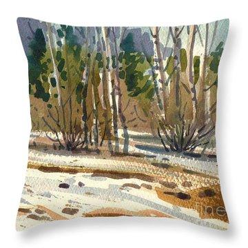 Snow Melt Throw Pillow by Donald Maier