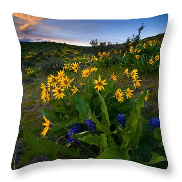 Snow Mountain Sunset Throw Pillow by Mike  Dawson