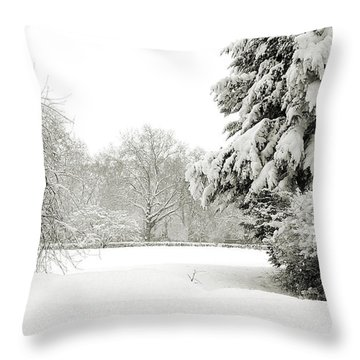 Throw Pillow featuring the photograph Snow Packed Park by Lenny Carter
