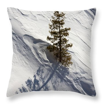 Throw Pillow featuring the photograph Snow Shadow by Karen Lee Ensley