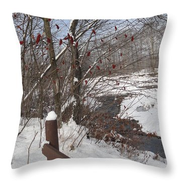 Snow Stream Throw Pillow by Meandering Photography