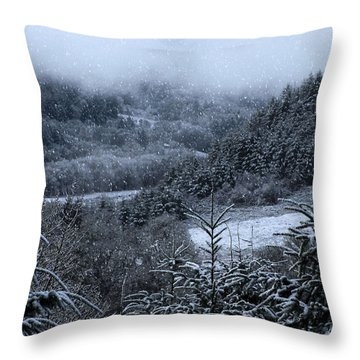 Snowfall Throw Pillow by Katie Wing Vigil