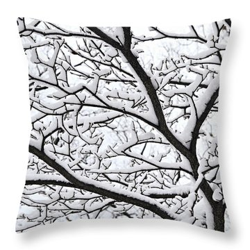 Snowy Branch Throw Pillow by Elena Elisseeva