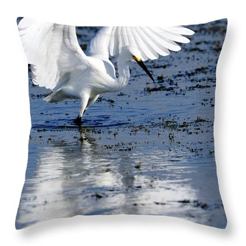 Snowy Egret Fishing Throw Pillow