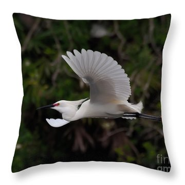 Snowy Egret In Flight Throw Pillow