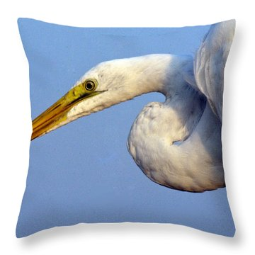 Throw Pillow featuring the photograph Snowy Egret Ready by Darleen Stry