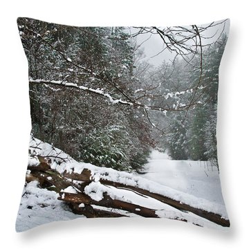 Snowy Fence Throw Pillow by Debra and Dave Vanderlaan