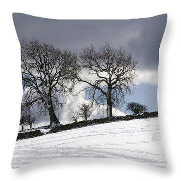 Snowy Field, Weardale, County Durham Throw Pillow by John Short
