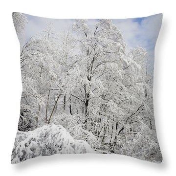 Snowy Landscape Throw Pillow by Len Rue Jr and Photo Researchers