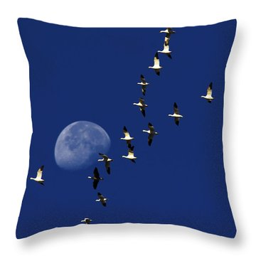 Snowy Moon Throw Pillow by Tony Beck