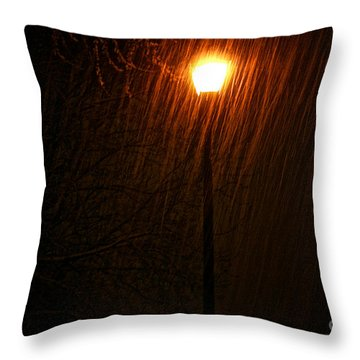 Snowy Night Throw Pillow by Susan Herber