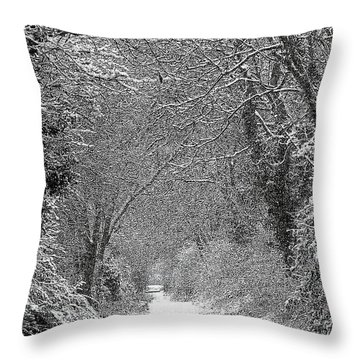 Snowy Path Throw Pillow by Linsey Williams