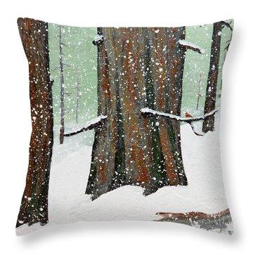 Snowy Redwood Throw Pillow