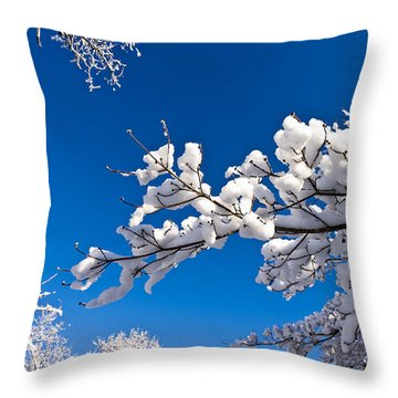 Snowy Trees And Blue Sky Throw Pillow