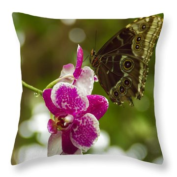 Soaring Orchid Throw Pillow