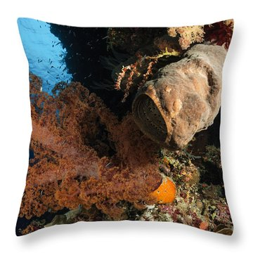 Soft Coral Seascape, Indonesia Throw Pillow by Todd Winner