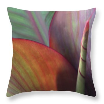 Soft Focus Petal Throw Pillow