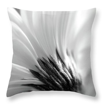 Soft Gerbera Throw Pillow