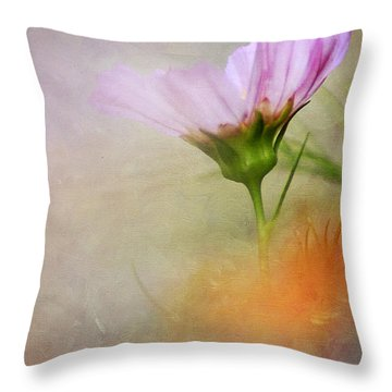 Soft Pastels Throw Pillow by Darren Fisher