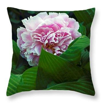 Soft Pink Throw Pillow by Elsa Marie Santoro
