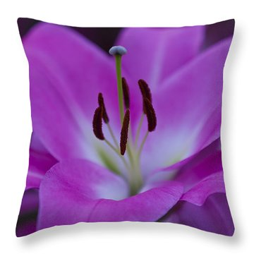 Soft Purple Throw Pillow by Maj Seda