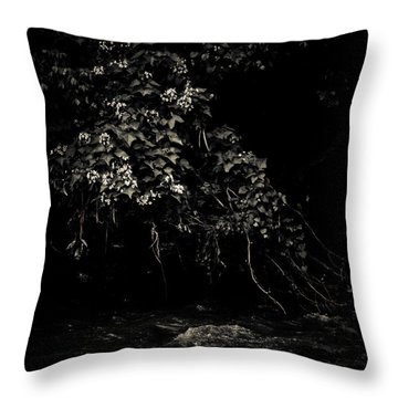 Solace Throw Pillow by Jessica Brawley