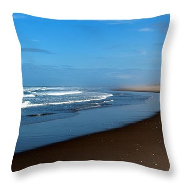 Throw Pillow featuring the photograph Solitary by Jo Sheehan
