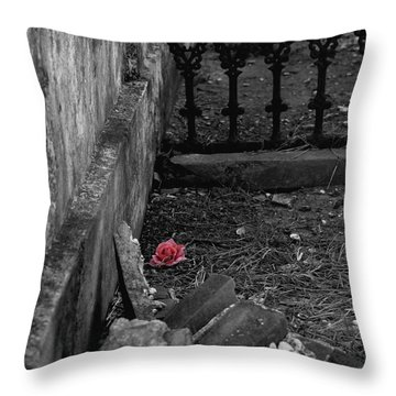 Solitary Rose Throw Pillow by Renee Barnes