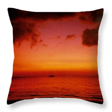 Solo Throw Pillow by Kurt Van Wagner