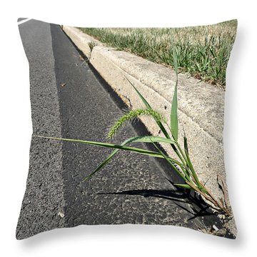 Some Fell On Stony Ground Throw Pillow by Richard Reeve