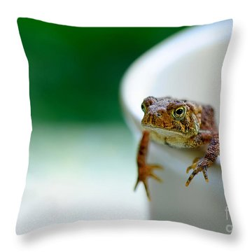 Somebody Needs Coffee Throw Pillow by Lois Bryan