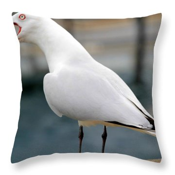 Throw Pillow featuring the photograph Something To Say by Laurel Talabere