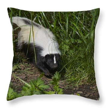 Something To Sniff At Throw Pillow by Sean Griffin