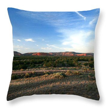 Throw Pillow featuring the photograph Somewhere Off The Interstate In New Mexico by Lon Casler Bixby