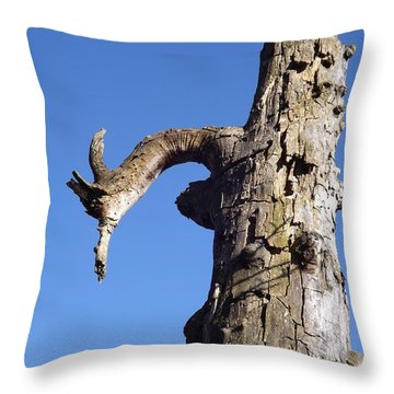 Throw Pillow featuring the photograph Soul Of The Wood Pecker by Gerald Strine