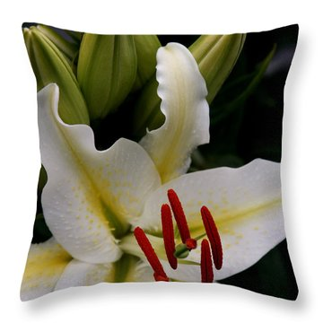 Sounding On Forever Throw Pillow by Sharon Mau