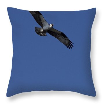 Throw Pillow featuring the photograph Sounding The Alarm by Anne Rodkin