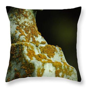 Soundless Sleep The Meek Throw Pillow by Rebecca Sherman