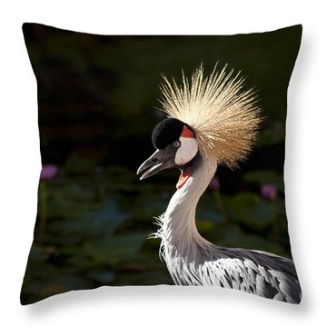 South African Grey Crowned Crane Throw Pillow by Sharon Mau