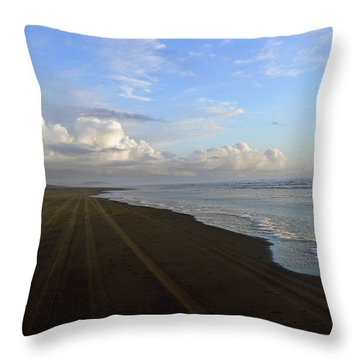South Bound Throw Pillow by Pamela Patch