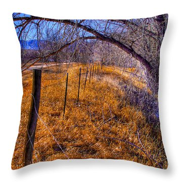 South Platte Fenceline Throw Pillow by David Patterson